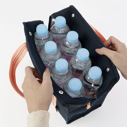 Mesh Lunch Cooler Tote
