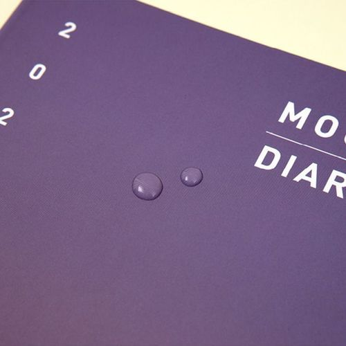 2021 Gradient Mood Monthly Diary