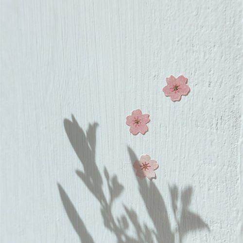 Mini Cherry Blossom Deco Sticker