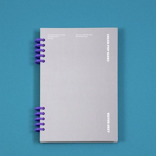 Color Pop Monthly Diary Planner