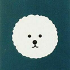 Reading Pet Eraser