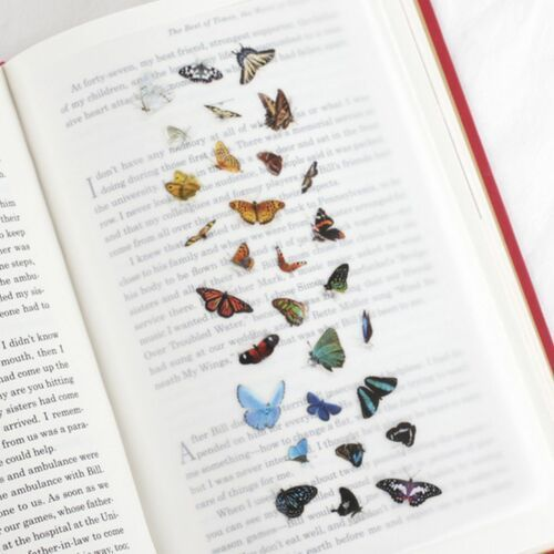 Butterfly Nature Sticker