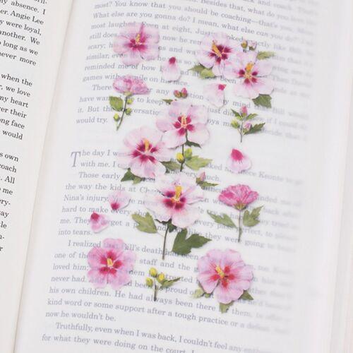 Rose of Sharon Pressed Flower Sticker