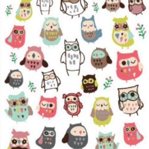 Owl Deco Sticker