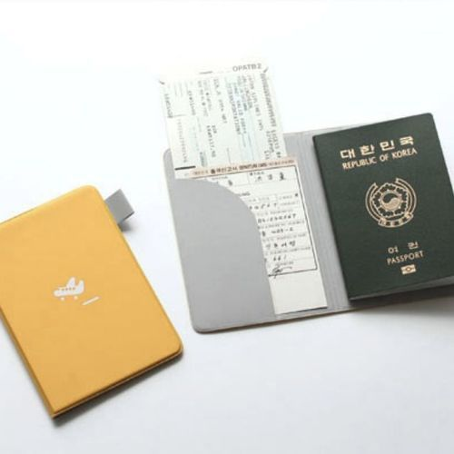 Plane Passport Case