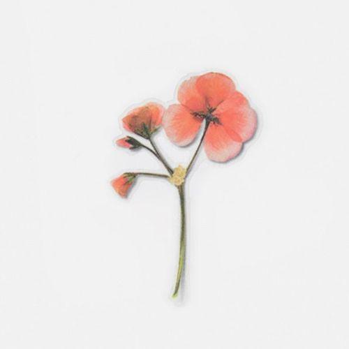 Geranium Pressed Flower Sticker