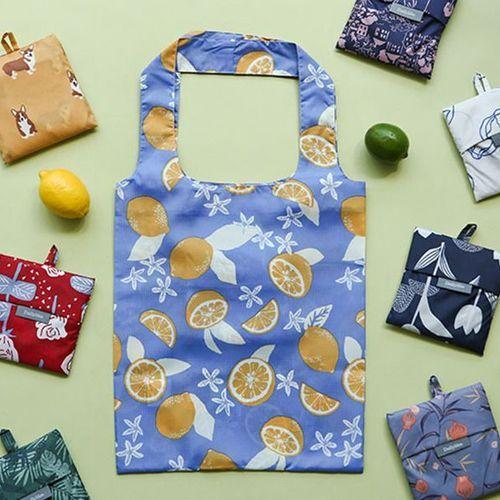 Large Dailylike Foldable Bag v2