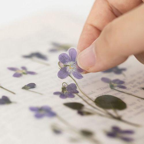 Violet Pressed Flower Sticker